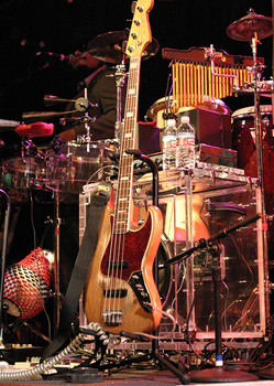 Image jacked from ampeg.com